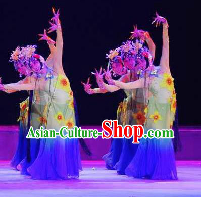 Chinese Traditional Folk Dance Costume Beijing Opera Classical Dance Dress for Women