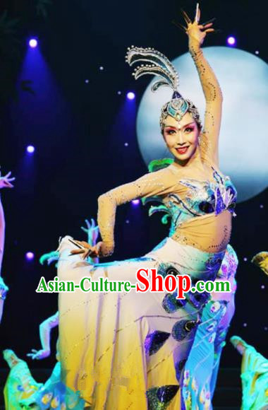 Chinese Traditional Dai Ethnic Costumes Dai Minority Nationality Peacock Dance Clothing for Women