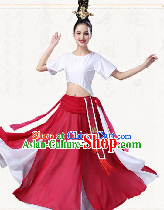 Chinese Traditional Classical Dance Dress Ancient Group Dance Costumes for Women