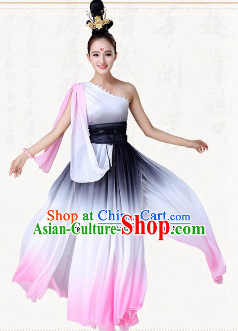 Chinese Traditional Classical Dance Clothing Group Dance Costumes for Women