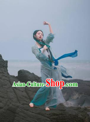 Ancient China Song Dynasty Enchantress Princess Embroidered Costume for Women