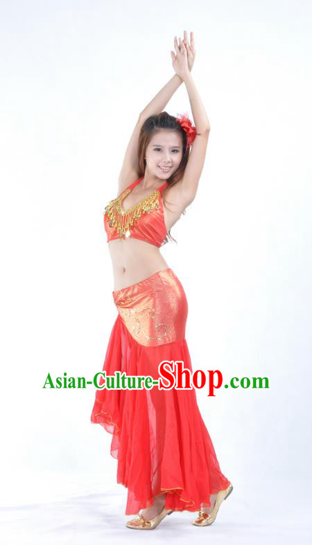 Asian Indian Traditional Belly Dance Costume India Oriental Dance Red Dress for Women