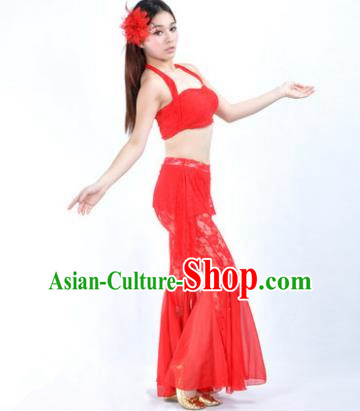 Indian National Belly Dance Red Lace Suits Bollywood Oriental Dance Costume for Women