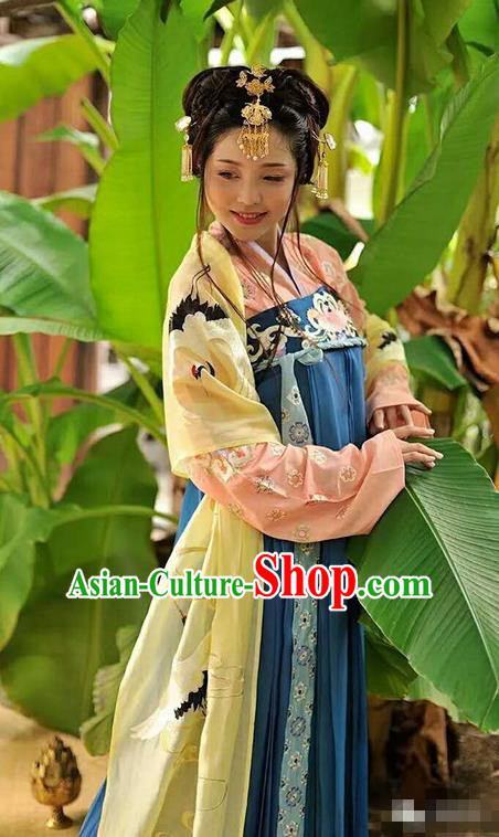 Traditional Chinese Tang Dynasty Palace Lady Dress Ancient Princess Embroidered Costume for Women