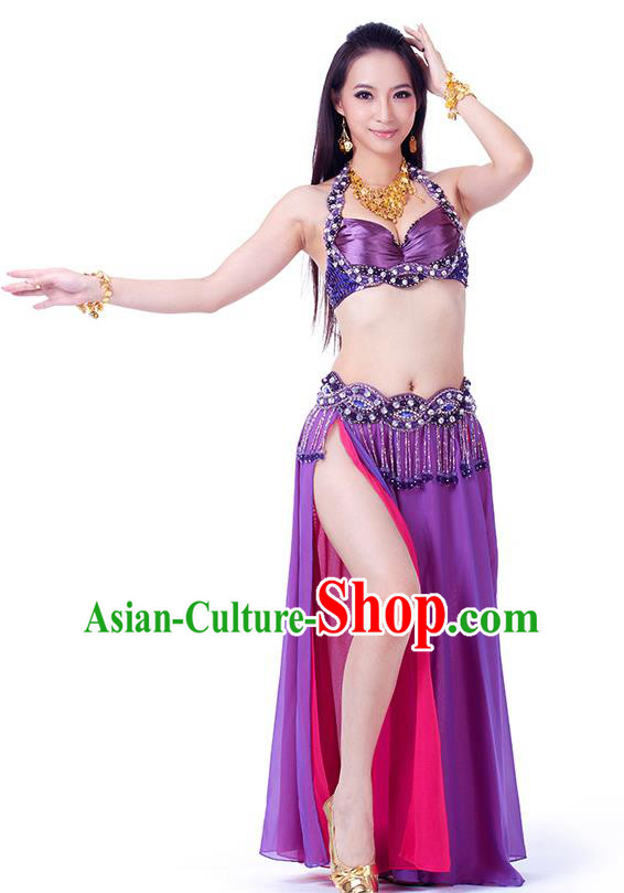 Traditional Indian Belly Dance Purple and Rosy Dress India Oriental Dance Clothing for Women
