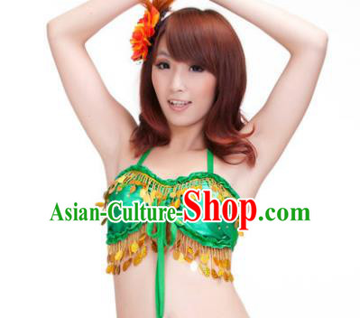Indian Belly Dance Green Garter Brassiere Asian India Oriental Dance Costume for Women