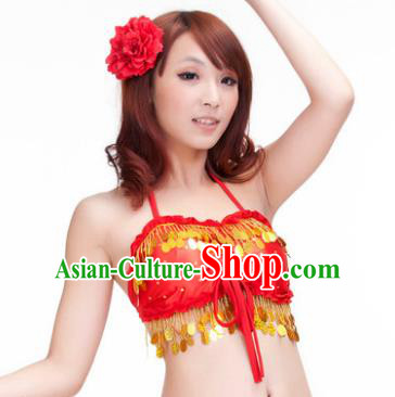 Indian Belly Dance Red Garter Brassiere Asian India Oriental Dance Costume for Women