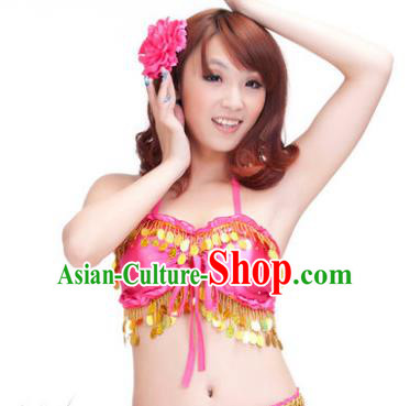 Indian Belly Dance Rosy Garter Brassiere Asian India Oriental Dance Costume for Women