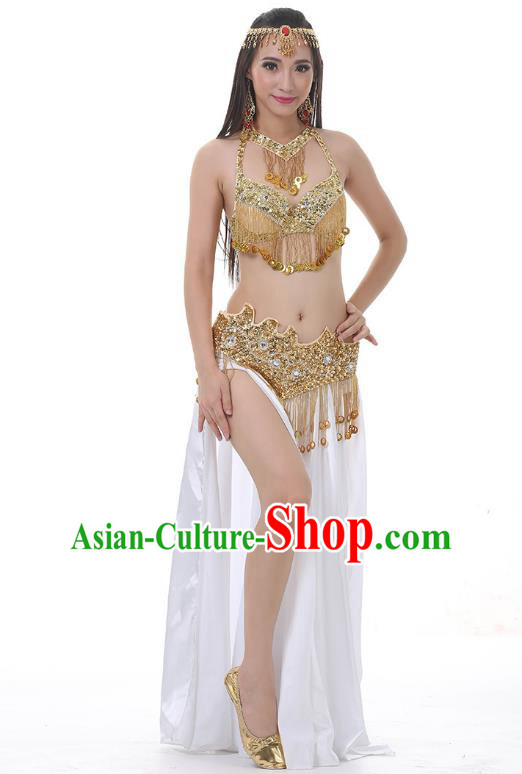 Indian Traditional Costume Golden Tassel Dress Oriental Dance Belly Dance Stage Performance Clothing for Women
