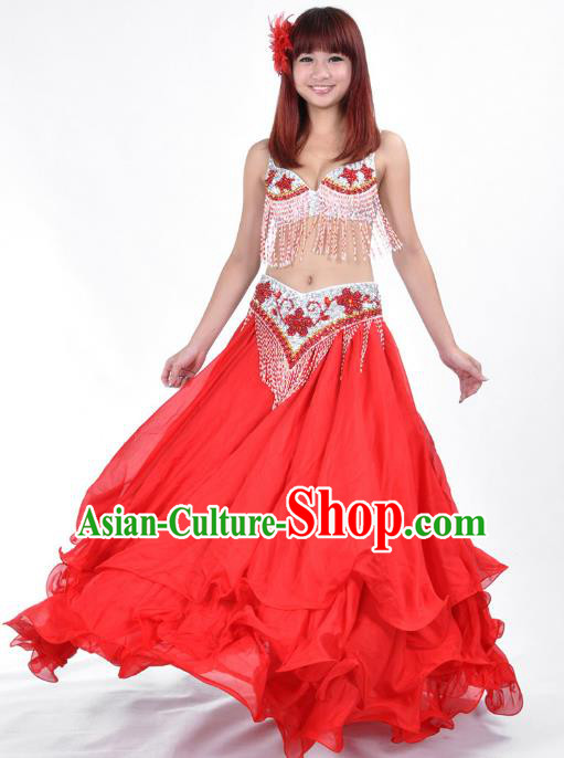Indian Traditional Costume Red Dress Oriental Dance Belly Dance Stage Performance Clothing for Women