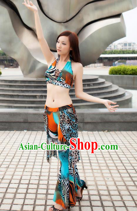 Indian Traditional Belly Dance Costume Classical Oriental Dance Dress for Women