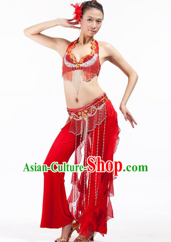 Top Grade Belly Dance Red Uniform Indian Raks Sharki Oriental Dance Clothing for Women