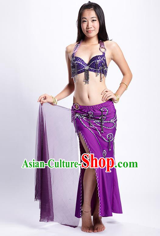 Top Grade Performance Clothing Belly Dance Purple Dress Indian Oriental Dance Costume for Women