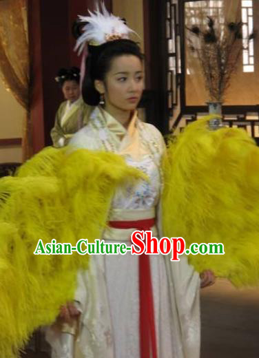 Chinese Ancient Ming Dynasty Empress Embroidered Dress Costume and Headpiece Complete Set for Women