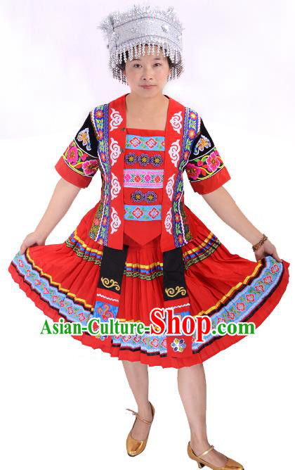 Traditional Chinese Miao Nationality Dance Costume, Chinese Minority Hmong Female Folk Dance Ethnic Pleated Skirt for Women