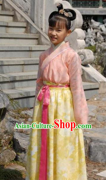 Chinese Ancient Tang Dynasty Princess Taiping Dress Replica Costume for Women