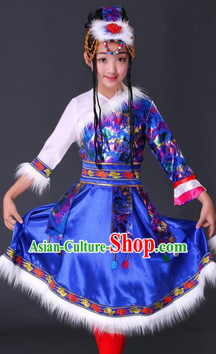Traditional Chinese Zang Nationality Dance Costume, Chinese Folk Dance Ethnic Clothing Tibetan Minority Blue Dress for Women