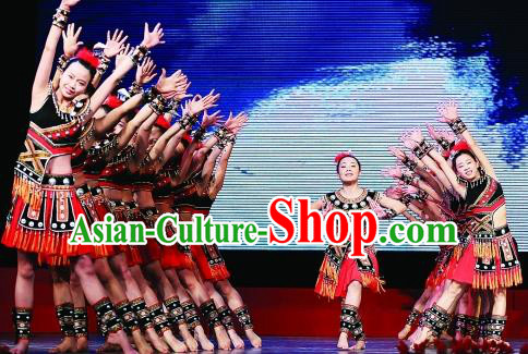 Traditional Chinese Folk Dance Embroidered Costume, China Ethnic Minority Dance Clothing for Women