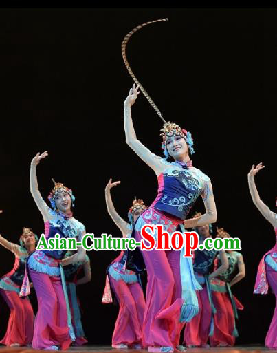 Traditional Chinese Classical Dance Beijing Opera Costume, China Folk Dance Stage Performance Dance Dress Clothing for Women