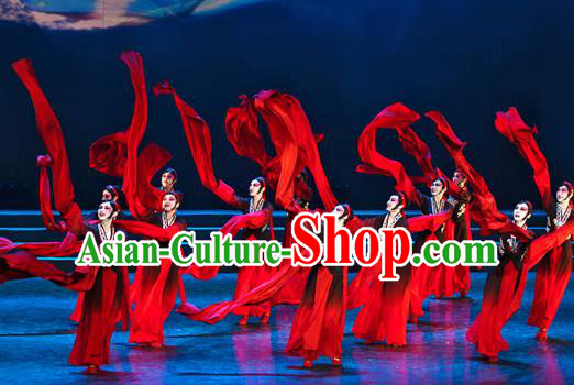 Traditional Chinese Classical Dance Costume, China Stage Performance Dress Beijing Opera Clothing for Women