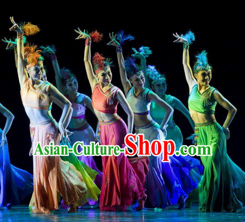 Traditional Chinese Folk Dance Classical Dance Costume, China Stage Performance Pavane Dance Dress Clothing for Women