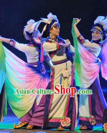 Chinese Traditional Folk Dance Stage Performance Costume, China Classical Dance Dress Clothing for Women