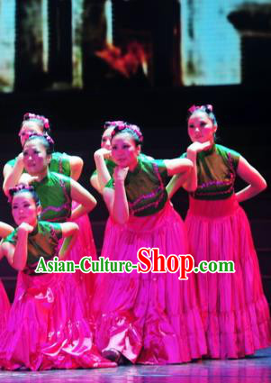 Traditional Chinese Folk Dance Ethnic Costume, China Classical Dance Clothing for Women