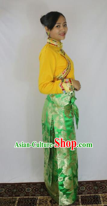 Chinese Traditional Minority Dance Costume Green Tibetan Skirt Zang Nationality Clothing for Women