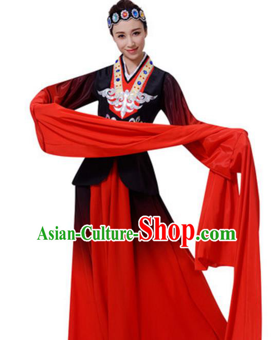 Top Grade Chinese Classical Dance Water Sleeve Dress Stage Performance Folk Dance Costume for Women