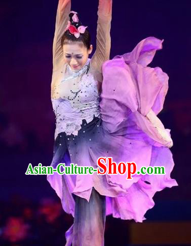 Chinese Traditional Folk Dance Costume Classical Dance Purple Dress for Women