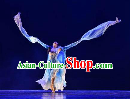 Chinese Traditional Classical Dance Costumes Umbrella Dance Water Sleeve Clothing for Women