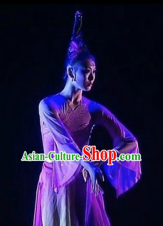 Chinese Traditional Group Dance Costumes Classical Dance Stage Performance Dress for Women