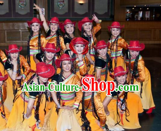 Chinese Traditional Tibetan Nationality Group Dance Costumes Classical Dance Stage Performance Dress for Women