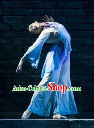Chinese Traditional Folk Dance Group Dance Costumes Classical Dance Stage Performance Dress for Women
