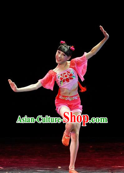 Chinese Traditional Folk Dance Group Dance Costumes Stage Performance Clothing for Women
