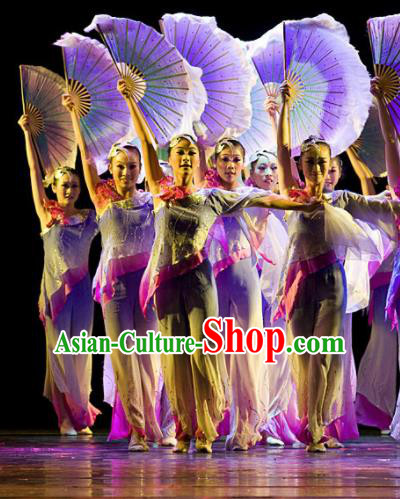 Chinese Traditional Fan Dance Costumes Stage Performance Folk Dance Dress for Women