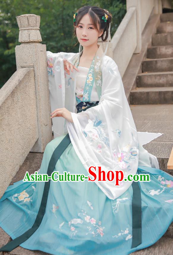 Traditional Chinese Song Dynasty Nobility Lady Hanfu Dress Ancient Royal Princess Historical Costumes for Women