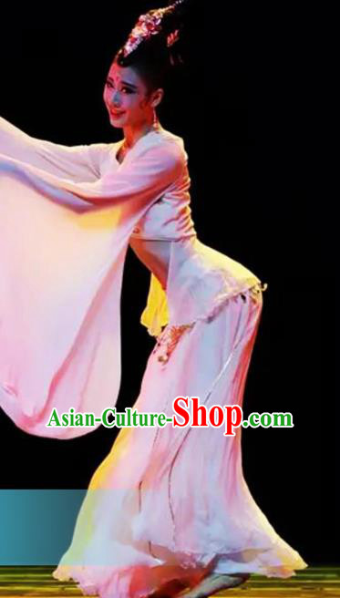 Traditional Chinese Classical Dance Competition Pink Costumes Water Sleeve Dance Stage Show Dress for Women