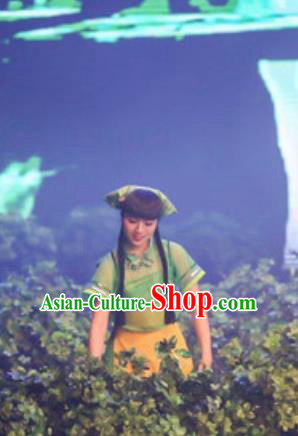 Chinese The Romantic Show of Songcheng Dance Green Dress Stage Performance Costume for Women