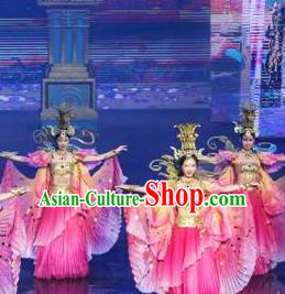 Chinese The Romantic Show of Tanhe Classical Dance Pink Dress Stage Performance Costume for Women