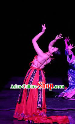Chinese Dreaming In Hometown Classical Dance Red Dress Stage Performance Costume and Headpiece for Women