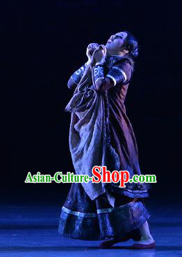 Lady Zhaojun Chinese Mongol Nationality Dress Stage Performance Dance Costume and Headpiece for Women