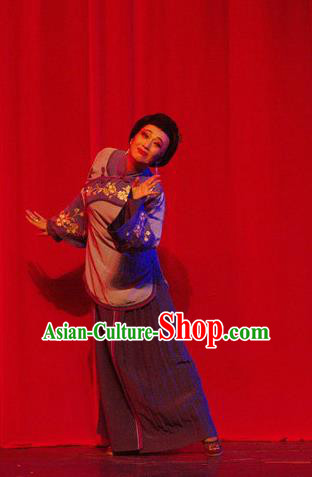 Chinese Moon Shines On Sugarbush Ferry Dance Maidservant Purple Dress Stage Performance Dance Costume and Headpiece for Women