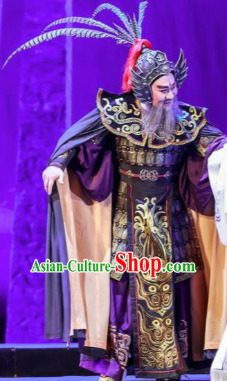 Chinese Shaoxing Opera Bronze Swallow Terrace General Clothing Stage Performance Dance Costume for Men