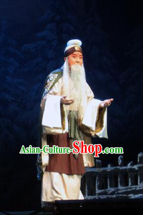 Su Wu In Desert Chinese Beijing Opera Shepherd Clothing Stage Performance Dance Costume and Headpiece for Men
