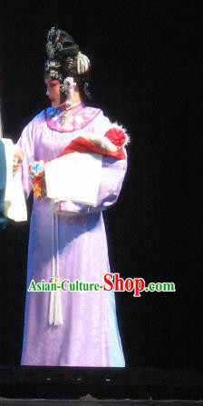 Su Wu In Desert Chinese Peking Opera Diva Pink Dress Stage Performance Dance Costume and Headpiece for Women