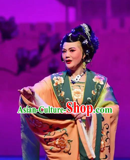 Amber Fate Chinese Beijing Opera Queen Mother Dress Stage Performance Dance Costume and Headpiece for Women