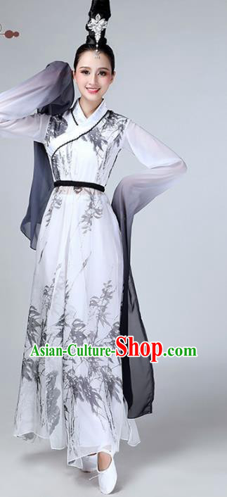 Chinese Traditional Stage Performance Dance Costume Classical Dance Water Sleeve Dress for Women