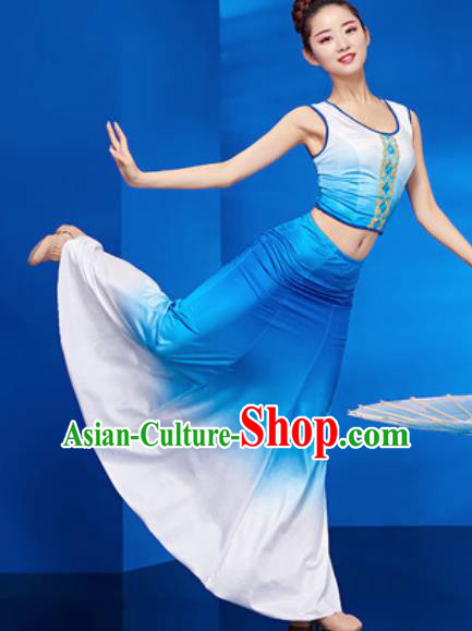 Chinese Traditional Ethnic Folk Dance Blue Dress Dai Nationality Peacock Dance Costume for Women