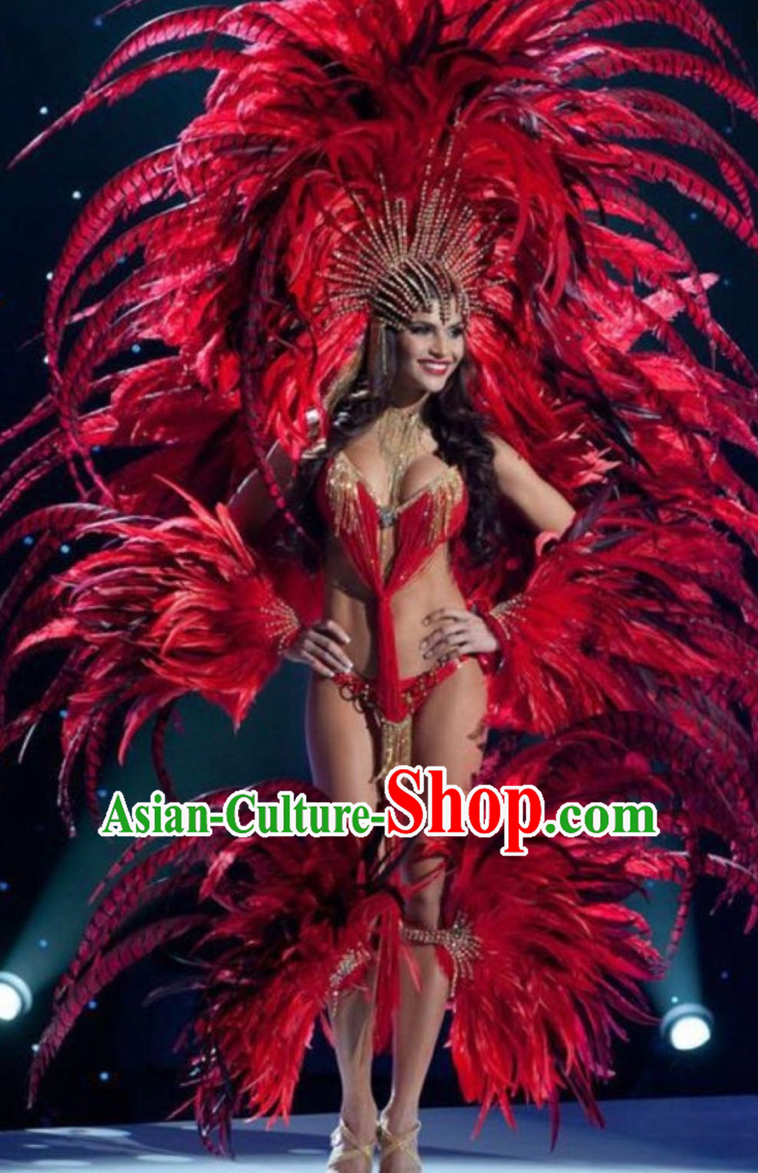 Brazilian Costumes Rio Carnival Costume Samba Dance Wear Feather Stage Costumes Complete Set